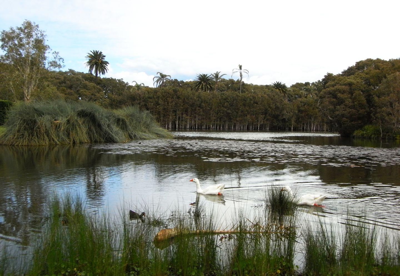 Park Sydney