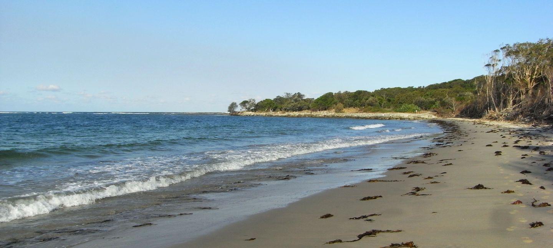 Woody Head Beach