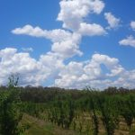 Himmel Australien