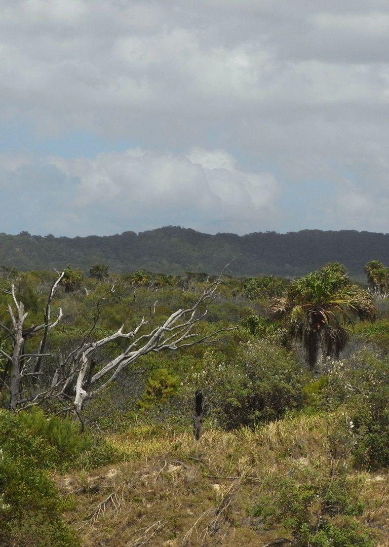 Landschaft auf Fraser