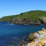 Muttonbird Island